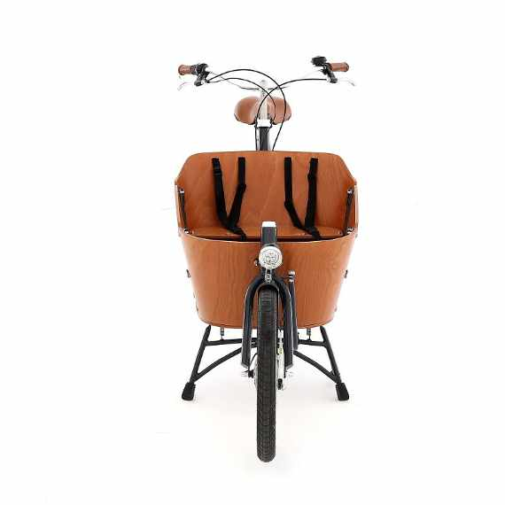 Babboe Mini cargo bike vista frontale