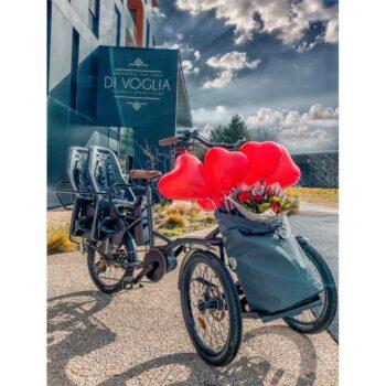 e-Kiffy cargobike longtail