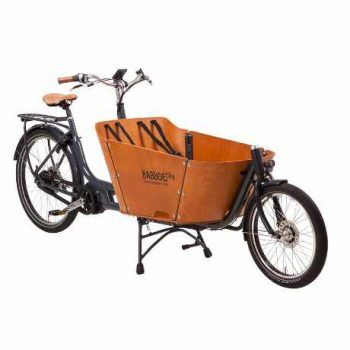babboe city mountain cargo bike a due ruote