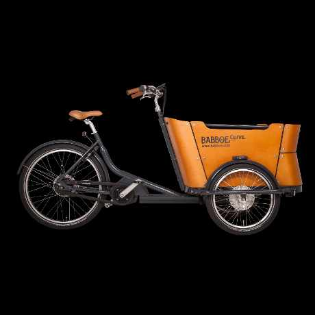 babboe curve mountain cargo bike 02