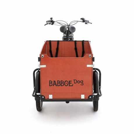 babboe e-Dog cargo bike trasporto cane bambini 03